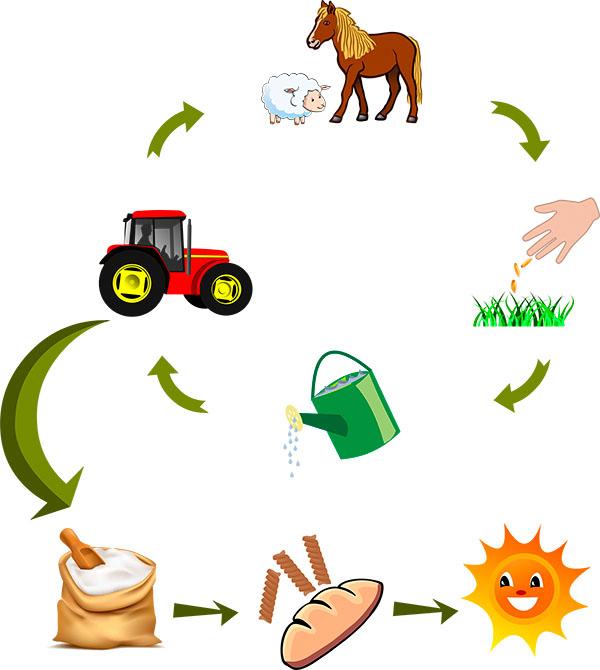 economia circular biopalacin planet